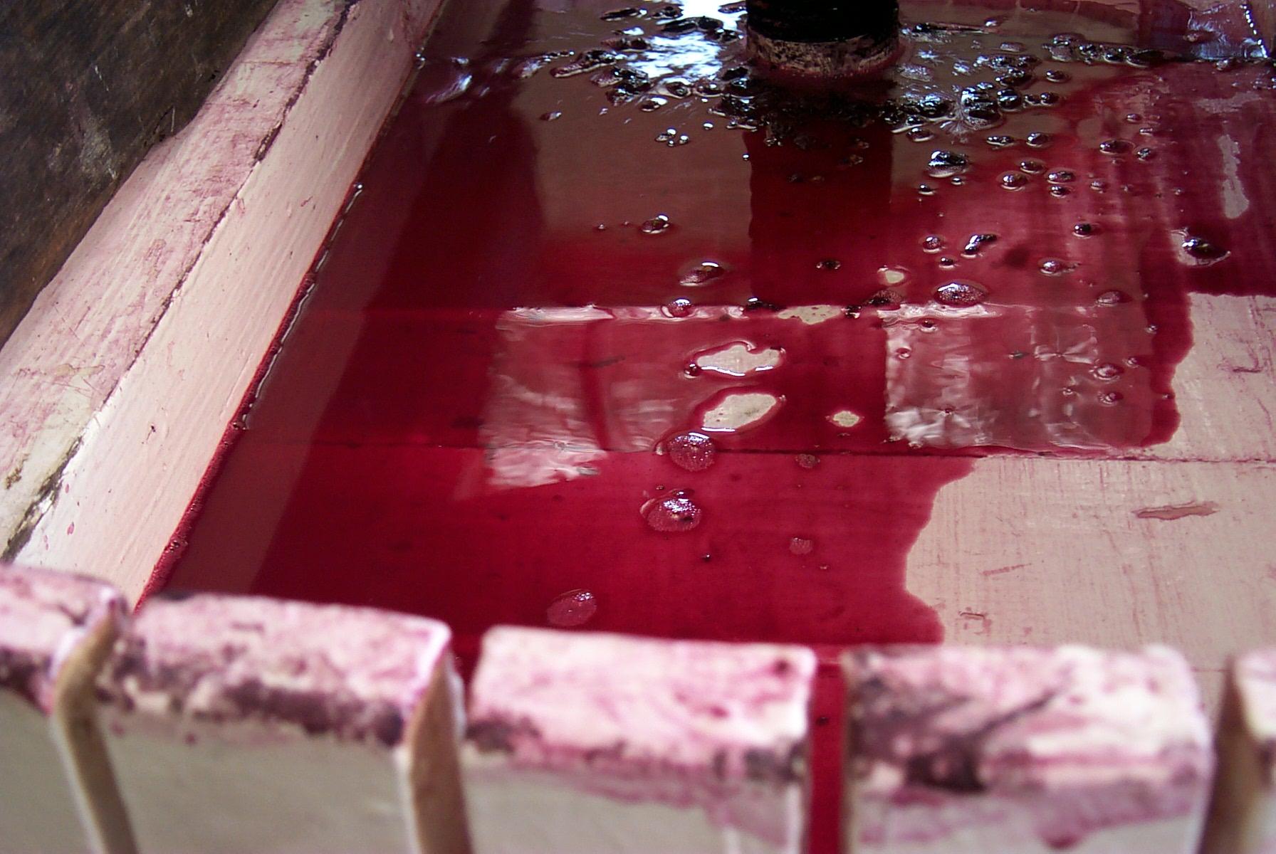 The Basket Press @ Yarra Yering, Bleeding Vinous Pleasure 1